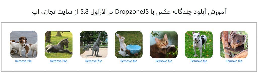 آموزش آپلود چندین عکس با Dropzone در لاراول 5.8